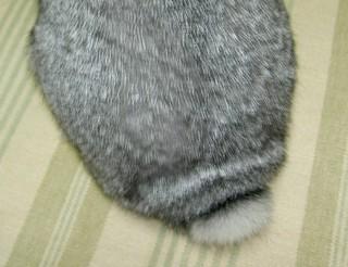 ボンボン付きの帽子みたい?