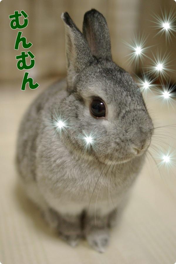 キラキラ〜☆