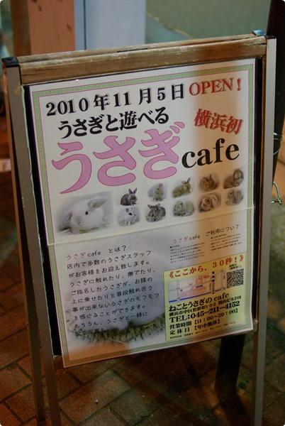 うさぎcafe
